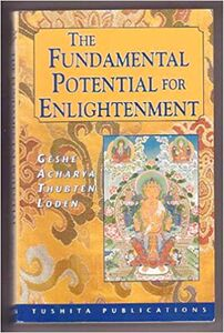 The Fundamental Potential for Enlightenment-front.jpg